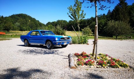 Location Ford Mustang 1966 Chatonnay